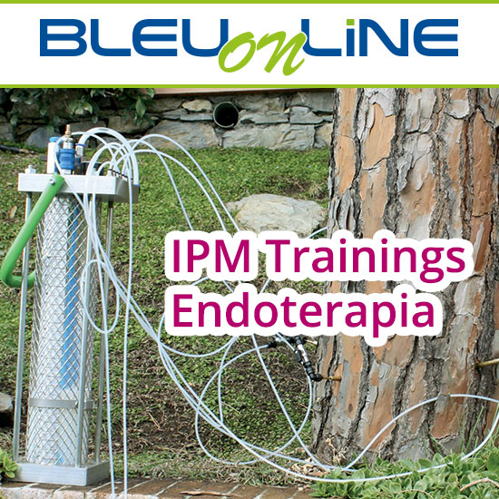 Corso on-line <br> IPM Trainings Endoterapia